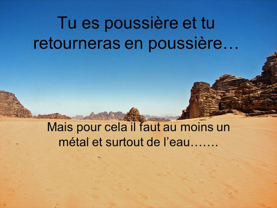 Tu es poussière et tu retourneras en poussière… Mais pour cela il faut au moins un métal et surtout de leau…….