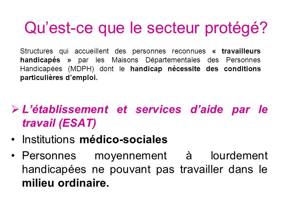 Quest-ce que le secteur protégé? Létablissement et services daide par le travail (ESAT) Institutions médico-sociales Personnes moyennement à lourdemen