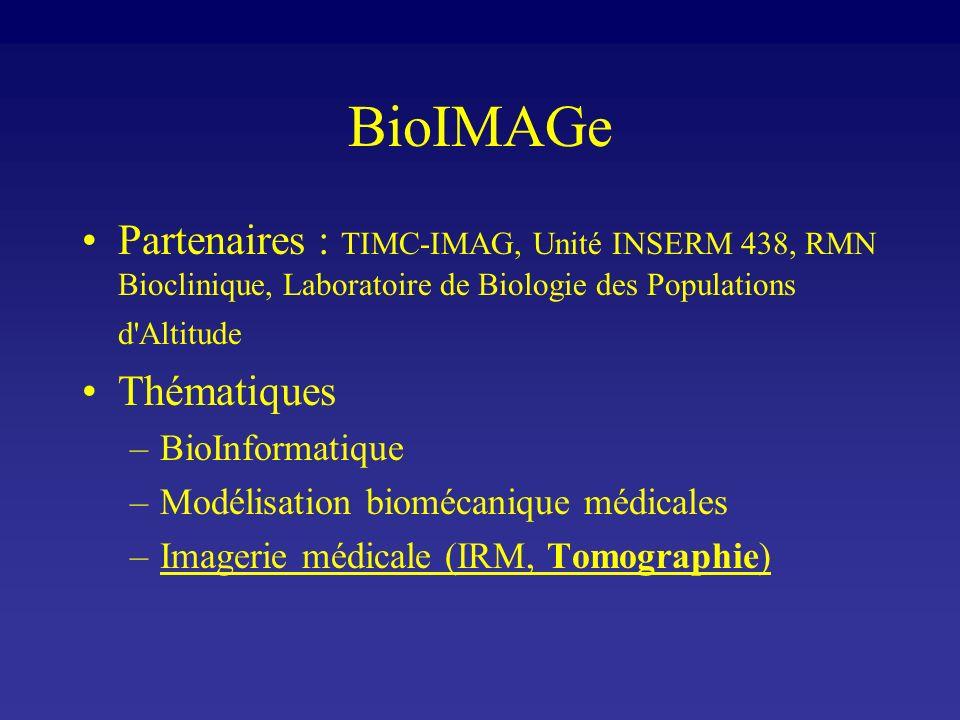 BioIMAGe Partenaires : TIMC-IMAG, Unité INSERM 438, RMN Bioclinique, Laboratoire de Biologie des Populations d'Altitude Thématiques –BioInformatique –