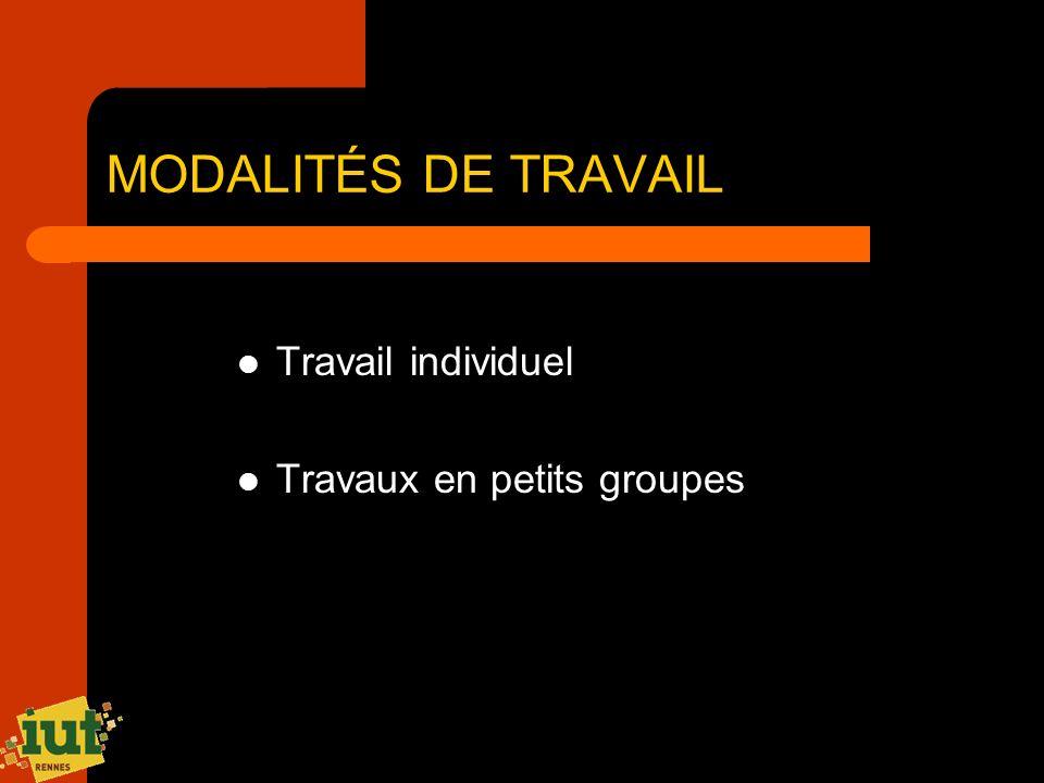 MODALITÉS DE TRAVAIL Travail individuel Travaux en petits groupes