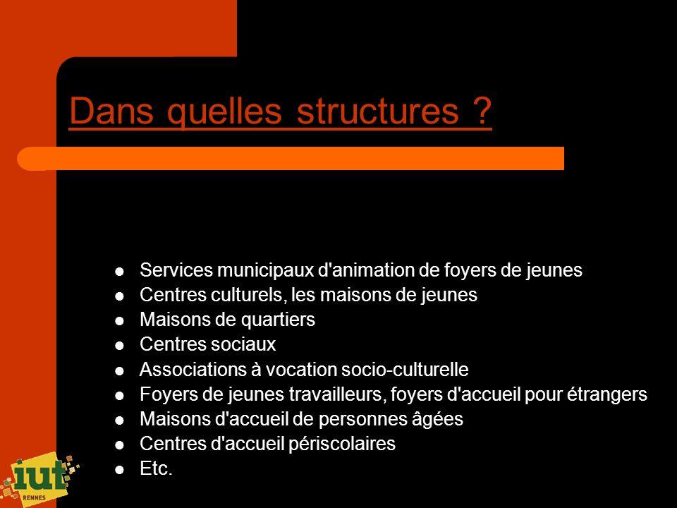 Dans quelles structures ? Services municipaux d'animation de foyers de jeunes Centres culturels, les maisons de jeunes Maisons de quartiers Centres so