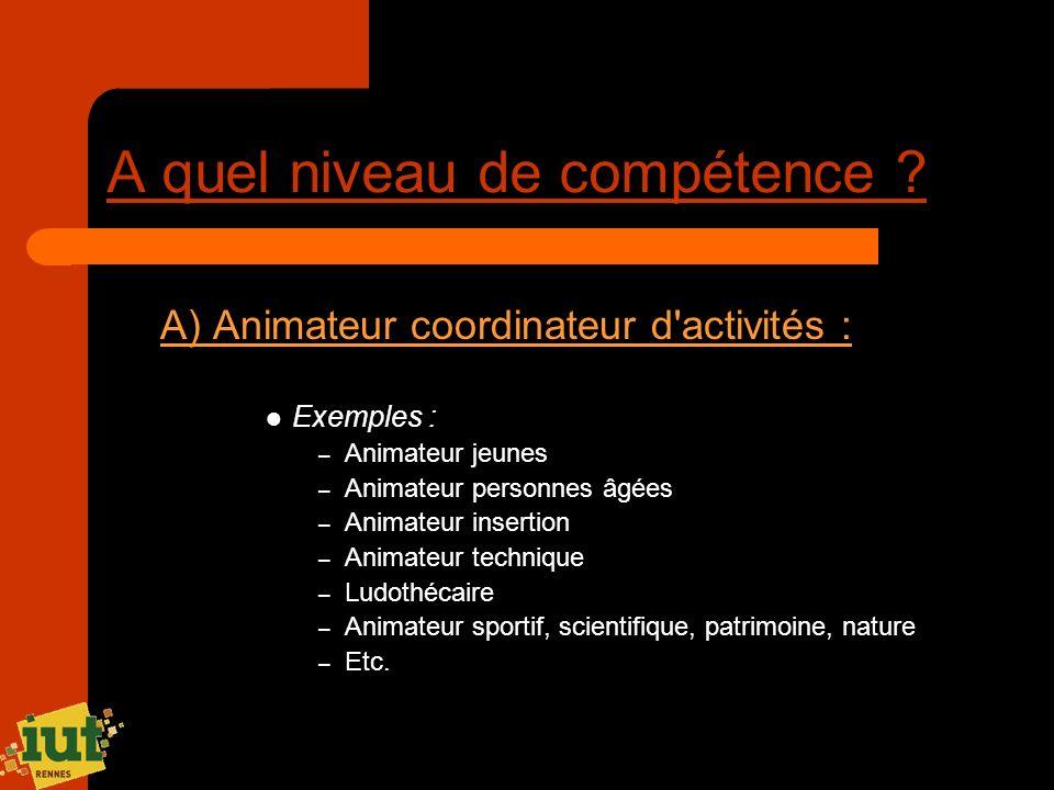 A quel niveau de compétence ? A) Animateur coordinateur d'activités : Exemples : – Animateur jeunes – Animateur personnes âgées – Animateur insertion