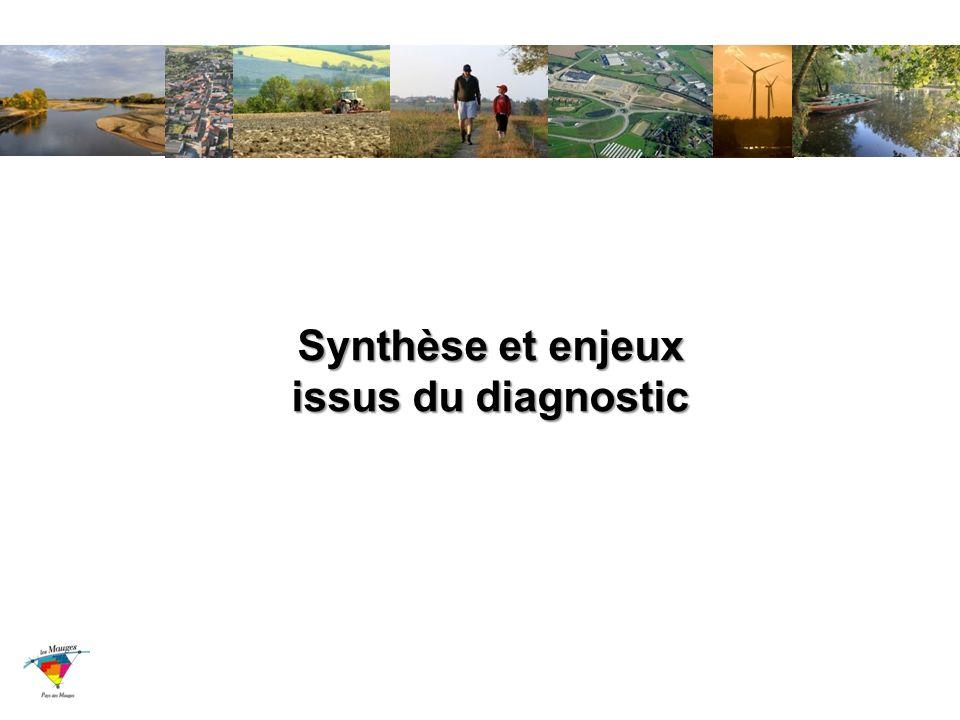 Synthèse et enjeux issus du diagnostic