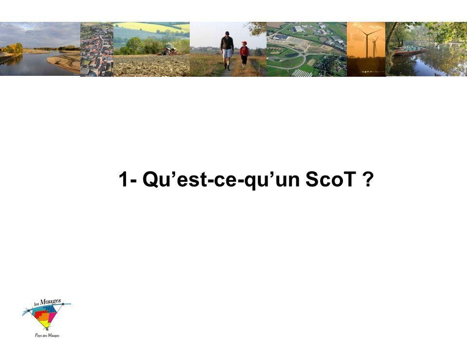 1- Quest-ce-quun ScoT ?