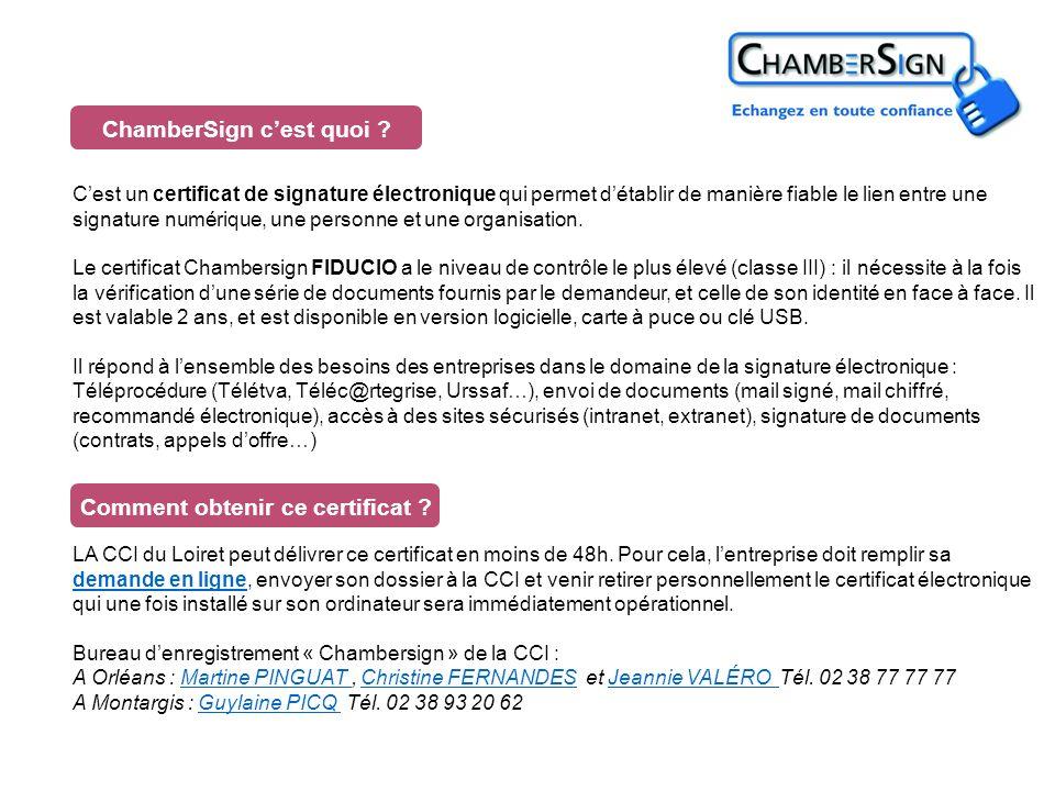 La CCI du Loiret remercie ses partenaires :CCI du Loiret ADELE Appic Assedic Chambersign Chambre de métiers et dartisanat du Loiret CPAM CRAM Centre Douanes INSEE Préfecture du Loiret Services fiscaux Urssaf
