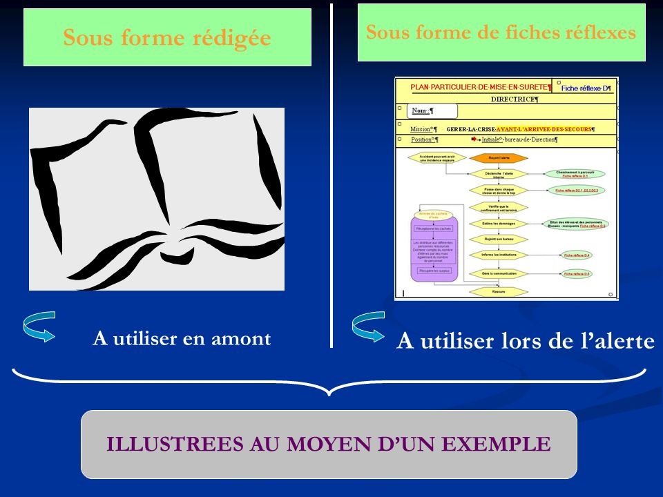 Sous forme rédigée Sous forme de fiches réflexes A utiliser lors de lalerte A utiliser en amont ILLUSTREES AU MOYEN DUN EXEMPLE