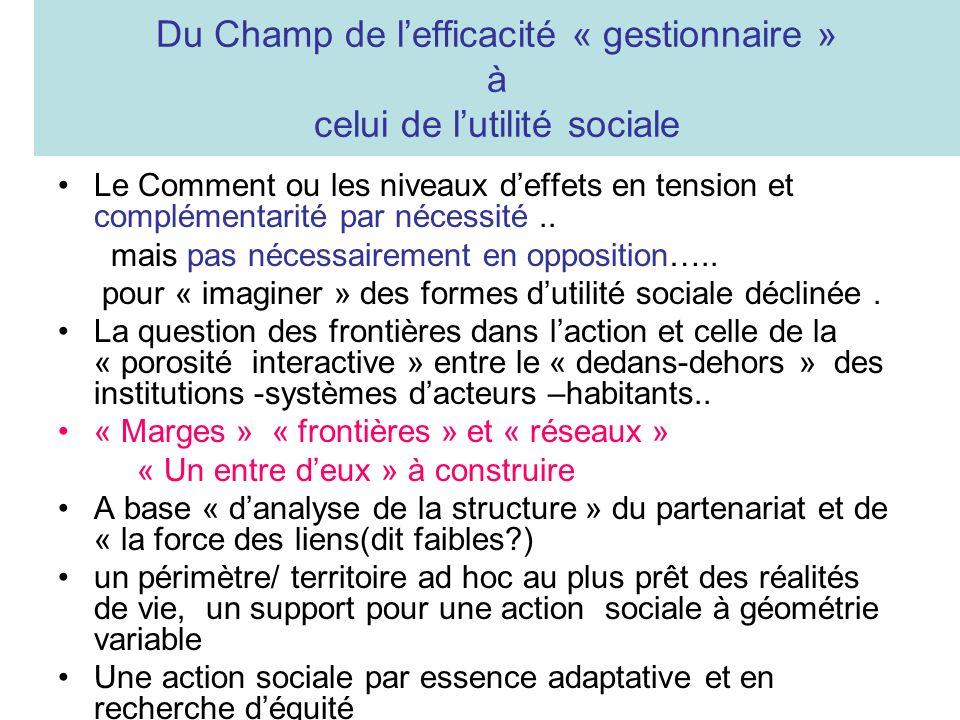 Du Champ de lefficacité « gestionnaire » à celui de lutilité sociale Le Comment ou les niveaux deffets en tension et complémentarité par nécessité..