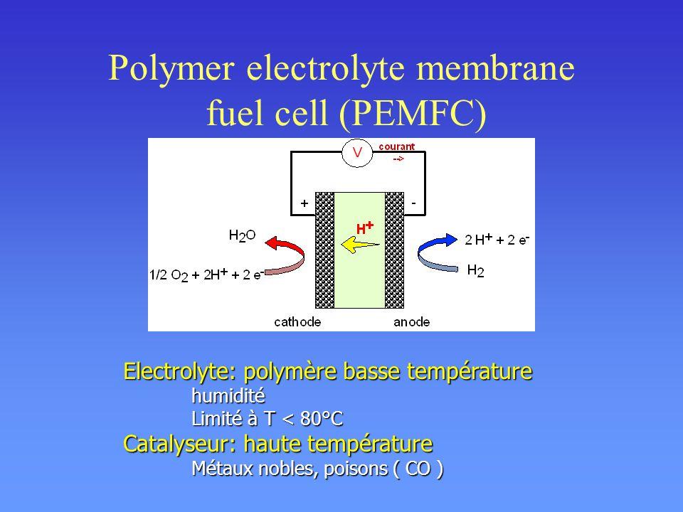 RMN du proton: dynamique moléculaire Équations de Bloch : MTMT T2T2 MZMZ T1T1 Mesures de T 1 : longitudinal Mesures de T 2 : transverse