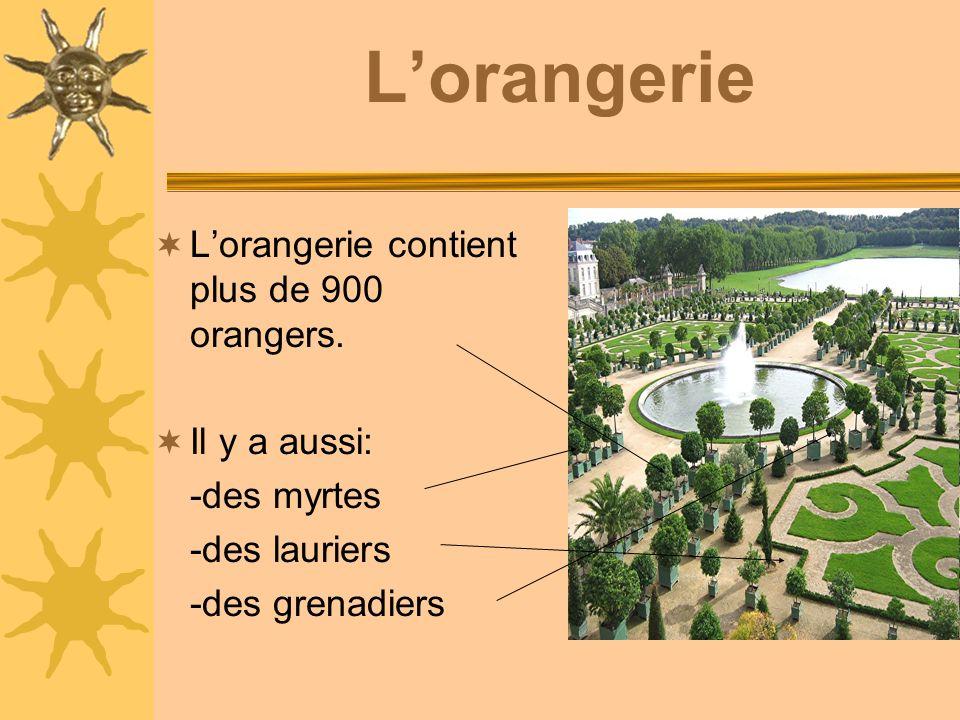 Lorangerie Lorangerie contient plus de 900 orangers.