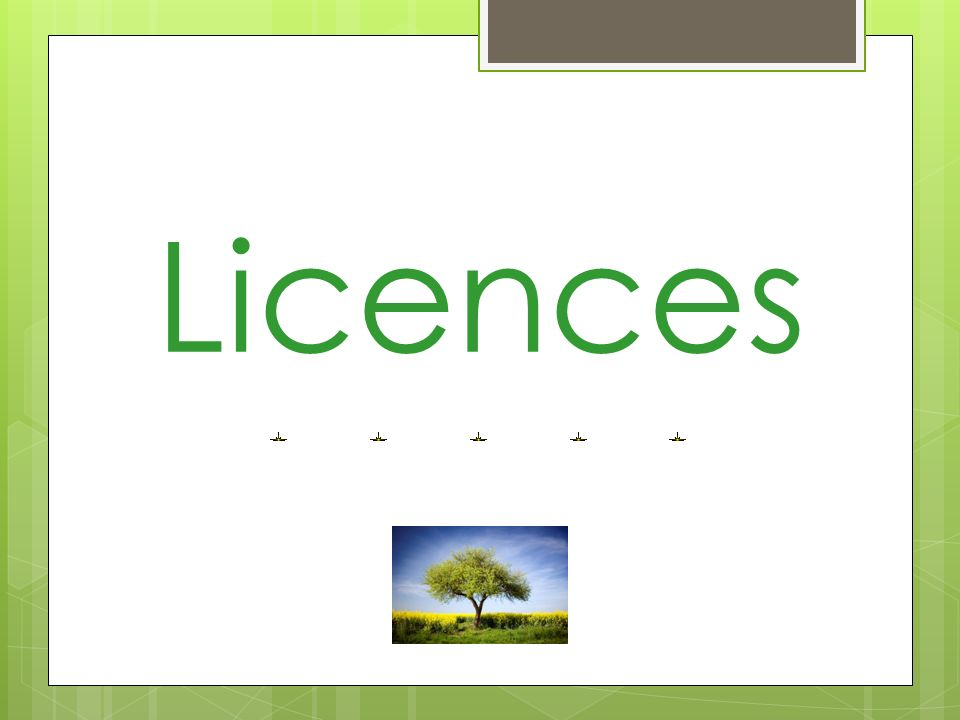Point licences