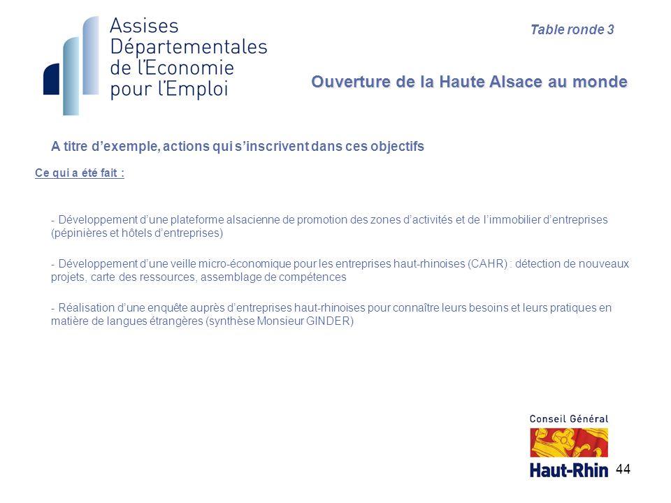 44 Ce qui a été fait : Ouverture de la Haute Alsace au monde Table ronde 3 A titre dexemple, actions qui sinscrivent dans ces objectifs - Développemen