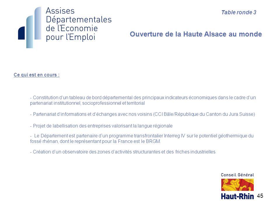 45 Ce qui est en cours : Ouverture de la Haute Alsace au monde Table ronde 3 - Constitution dun tableau de bord départemental des principaux indicateu