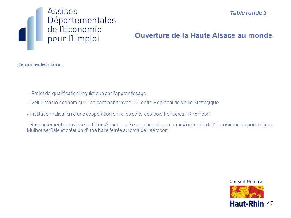 46 Ce qui reste à faire : Ouverture de la Haute Alsace au monde Table ronde 3 - Projet de qualification linguistique par lapprentissage - Veille macro