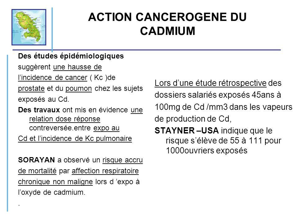 ACTION CANCEROGENE DU CADMIUM Des études épidémiologiques suggèrent une hausse de lincidence de cancer ( Kc )de prostate et du poumon chez les sujets