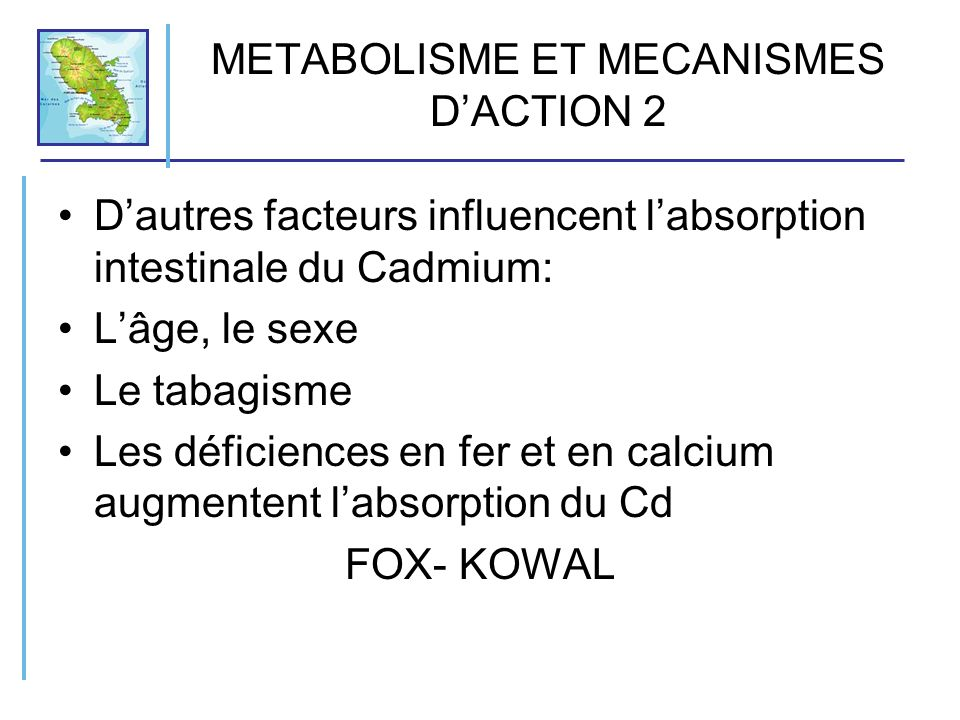 METABOLISME ET MECANISMES D ACTION 3 Distribution: le Cd une fois absorbé, est intra-érythrocytaire fixé à 90- 95% à lhémoglobine et à la métallothionéine MT, protéine de faible PM riche en groupements SH dont la synthèse, en présence de Cd, est stimulée Les lymphocytes aussi gardent le Cd lié avec la MT Ceci explique la persistance du Cd dans lorganisme.Sa demi- vie biologique est de 15ans.
