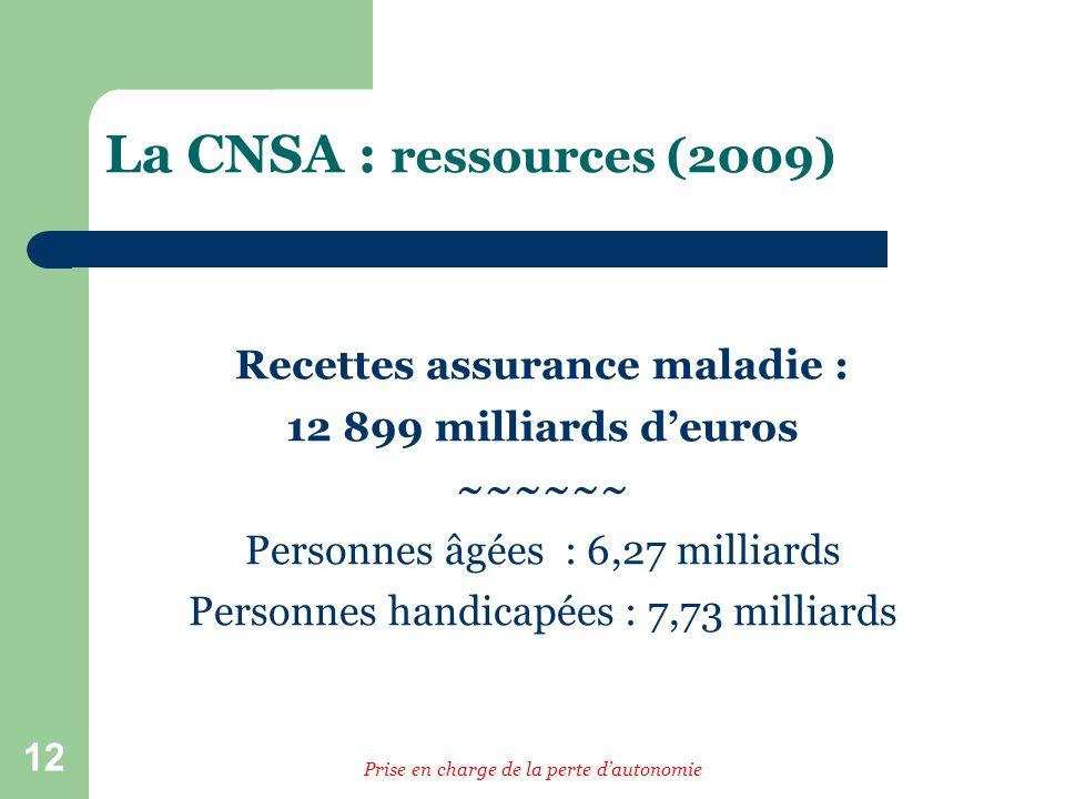 12 La CNSA : ressources (2009) Recettes assurance maladie : 12 899 milliards deuros ~~~~~~ Personnes âgées : 6,27 milliards Personnes handicapées : 7,73 milliards Prise en charge de la perte dautonomie