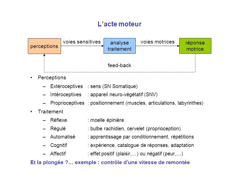 Lacte moteur feed-back analyse traitement voies sensitives réponse motrice voies motrices Perceptions –Extéroceptives: sens (SN Somatique) –Intérocept