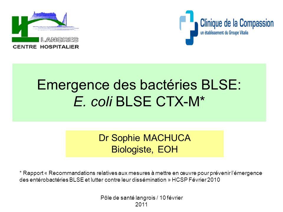 Pôle de santé langrois / 10 février 2011 Emergence des bactéries BLSE: E. coli BLSE CTX-M* Dr Sophie MACHUCA Biologiste, EOH * Rapport « Recommandatio
