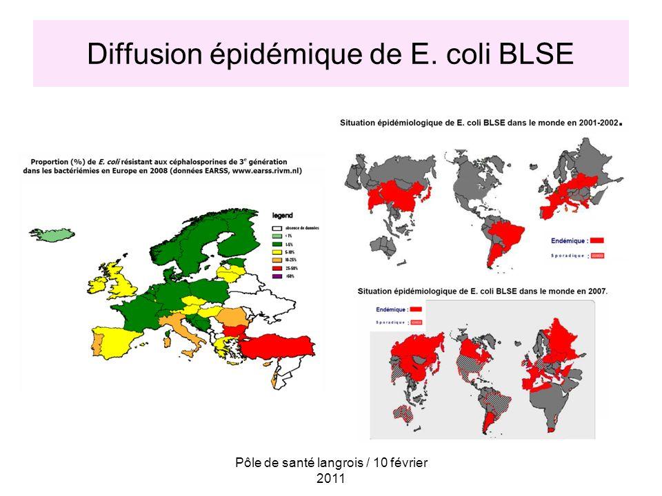 Pôle de santé langrois / 10 février 2011 Menace majeure en santé publique Exemple dun antibiogramme de E.