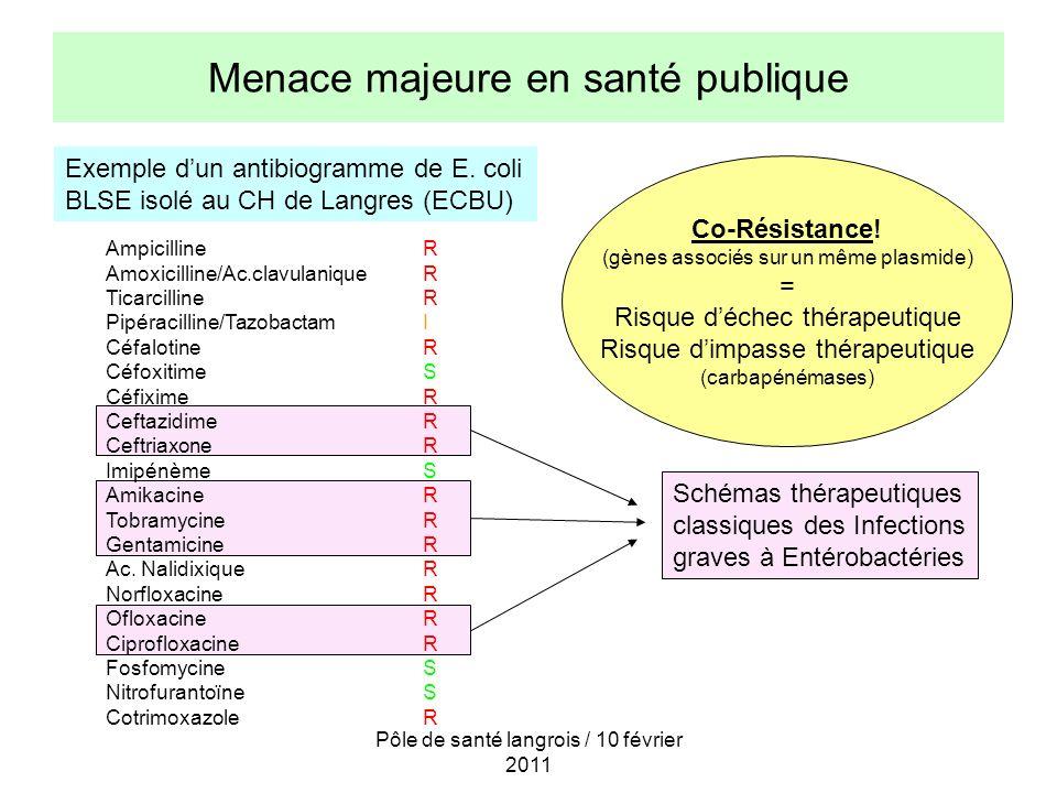 Pôle de santé langrois / 10 février 2011 Menace majeure en santé publique Exemple dun antibiogramme de E. coli BLSE isolé au CH de Langres (ECBU) Ampi