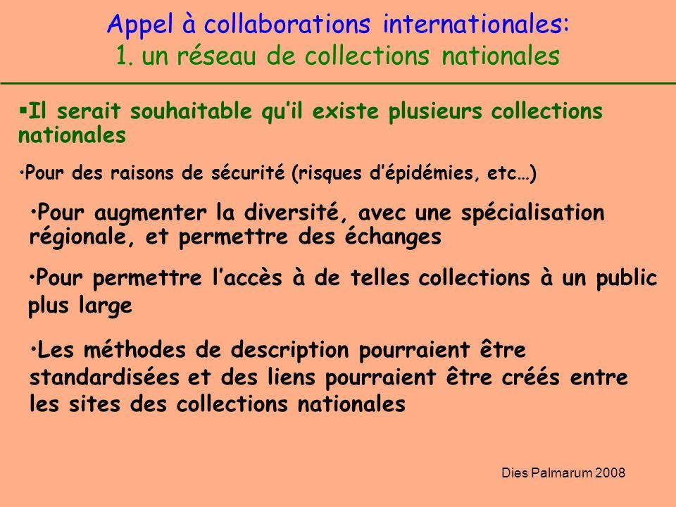 Dies Palmarum 2008 Appel à collaborations internationales: 1. un réseau de collections nationales Il serait souhaitable quil existe plusieurs collecti