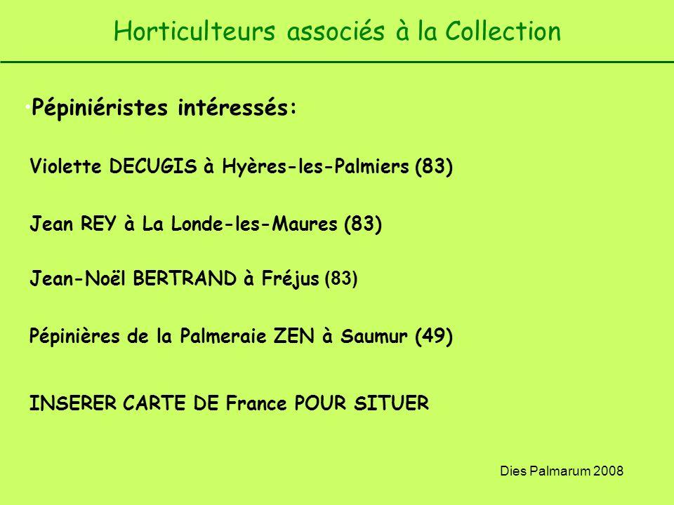 Dies Palmarum 2008 Horticulteurs associés à la Collection Pépiniéristes intéressés: Violette DECUGIS à Hyères-les-Palmiers (83) Jean REY à La Londe-le