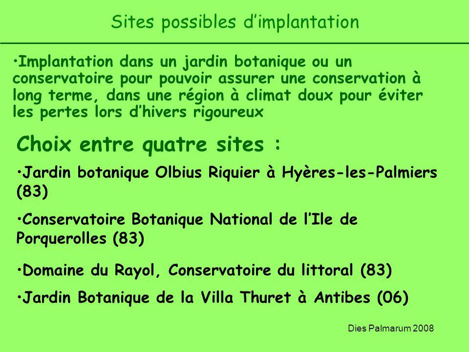 Dies Palmarum 2008 Sites possibles dimplantation Implantation dans un jardin botanique ou un conservatoire pour pouvoir assurer une conservation à lon
