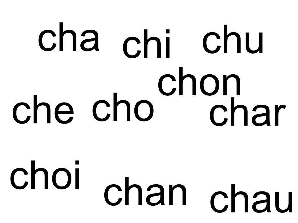 cha chat un chat