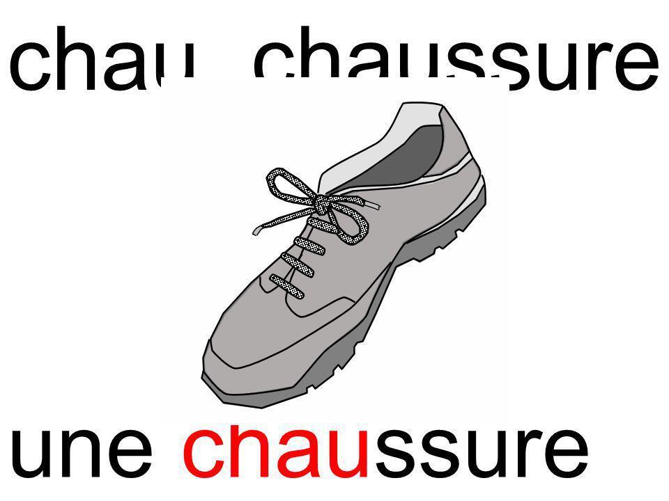 chauchaussure une chaussure