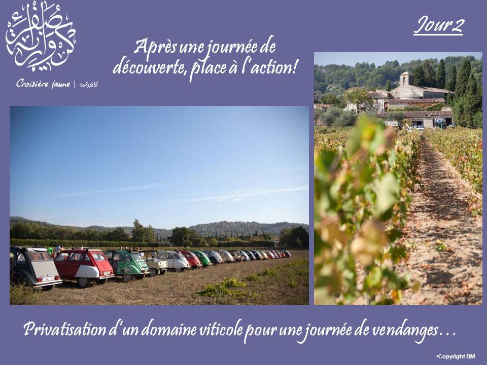 Après une journée de découverte, place à laction! Jour 2 Privatisation dun domaine viticole pour une journée de vendanges… Copyright BM