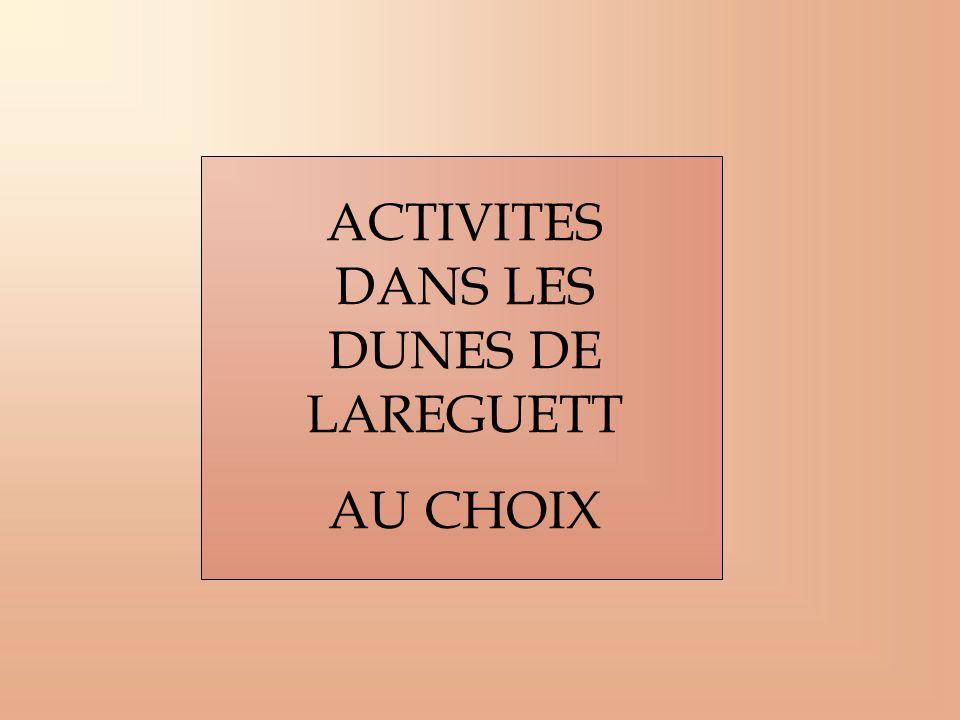 ACTIVITES DANS LES DUNES DE LAREGUETT AU CHOIX