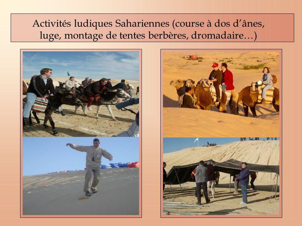 Activités ludiques Sahariennes (course à dos dânes, luge, montage de tentes berbères, dromadaire…)