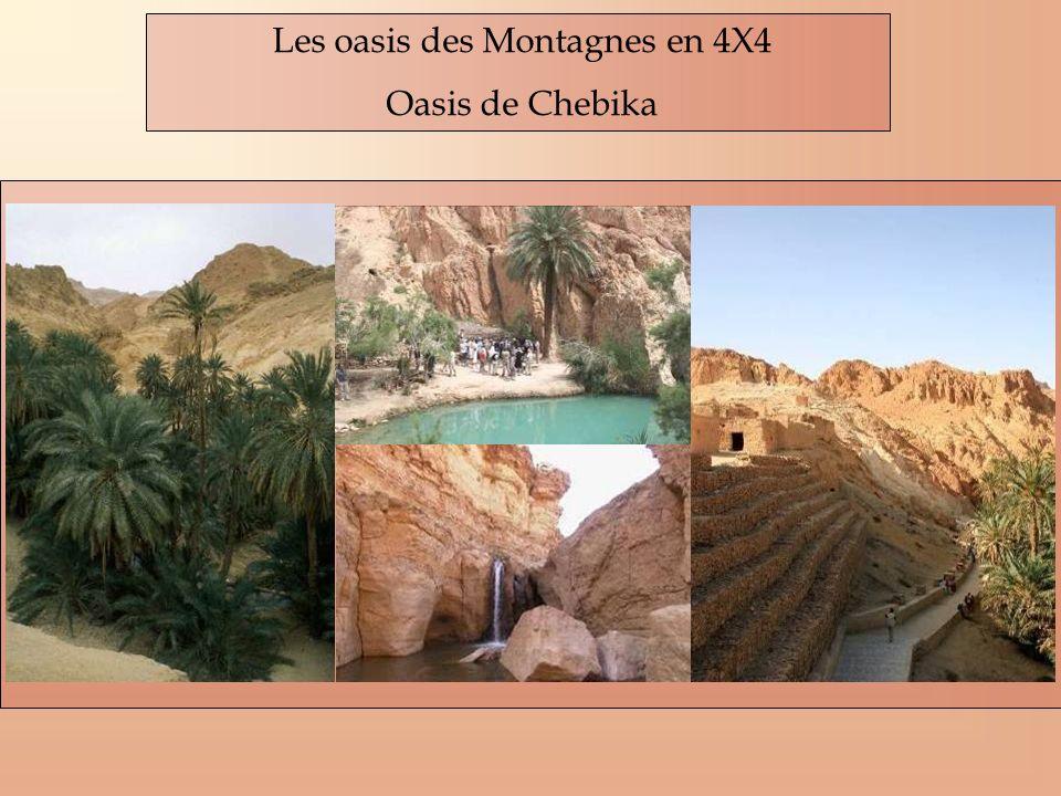 Les oasis des Montagnes en 4X4 Oasis de Chebika