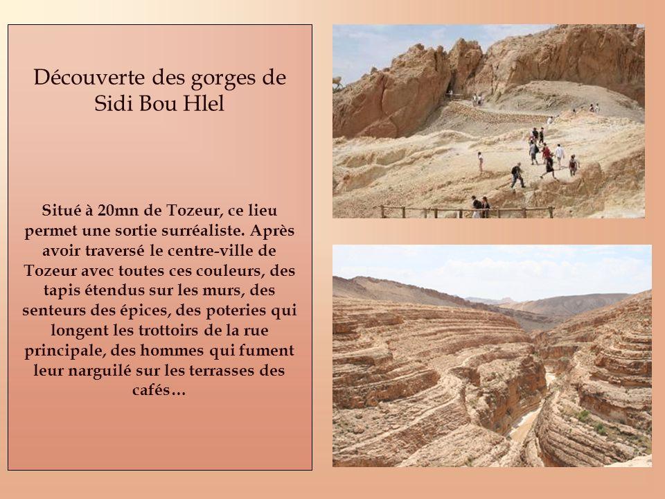 Découverte des gorges de Sidi Bou Hlel Situé à 20mn de Tozeur, ce lieu permet une sortie surréaliste. Après avoir traversé le centre-ville de Tozeur a