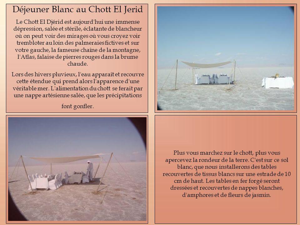 Déjeuner Blanc au Chott El Jerid Le Chott El Djérid est aujourd'hui une immense dépression, salée et stérile, éclatante de blancheur où on peut voir d