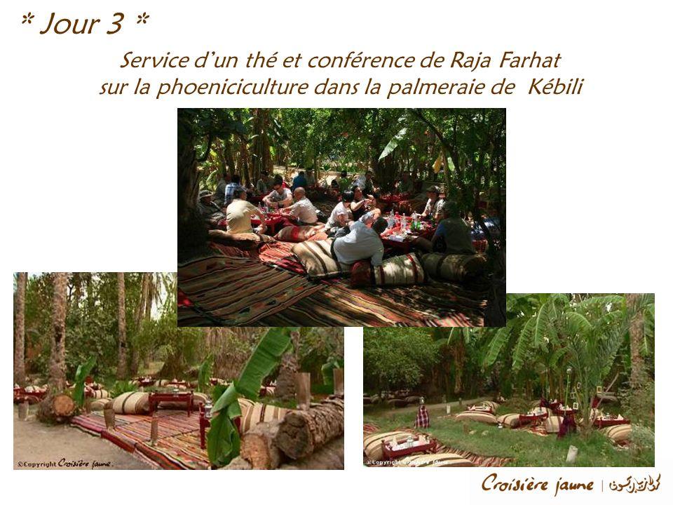 Service dun thé et conférence de Raja Farhat sur la phoeniciculture dans la palmeraie de Kébili * Jour 3 *