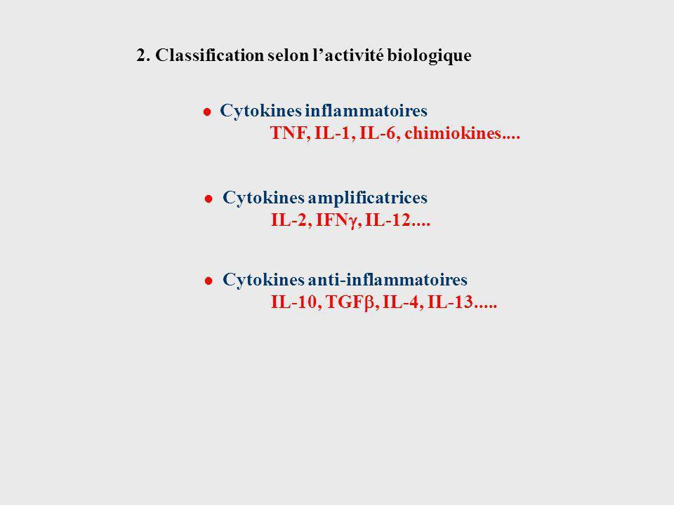 Cytokines amplificatrices IL-2, IFN, IL-12.... Cytokines anti-inflammatoires IL-10, TGF, IL-4, IL-13..... Cytokines inflammatoires TNF, IL-1, IL-6, ch