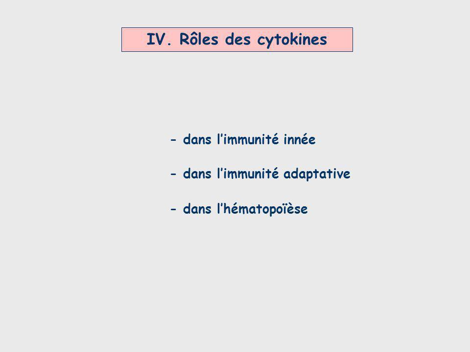 IV. Rôles des cytokines - dans limmunité innée - dans limmunité adaptative - dans lhématopoïèse