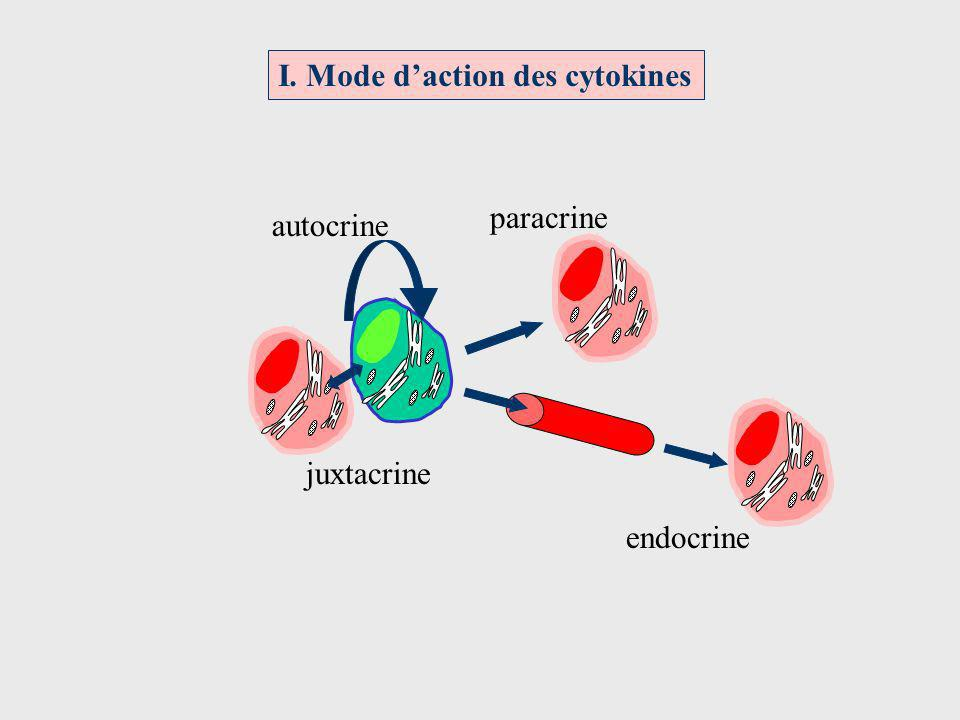 I. Mode daction des cytokines autocrine endocrine paracrine juxtacrine