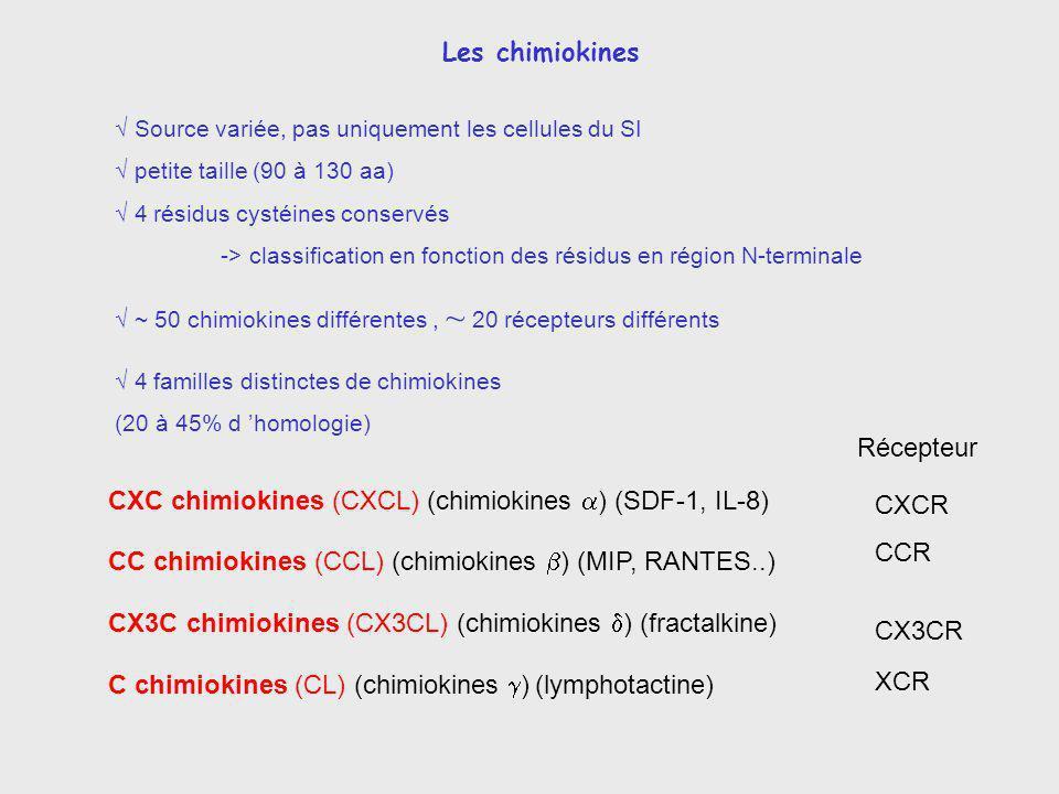 Cytokines inflammatoires TNF, IL-1, IL-6, chimiokines....