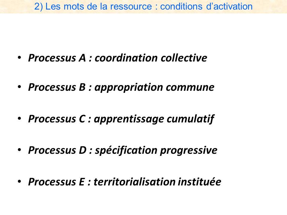 2) Les mots de la ressource : conditions dactivation Processus A : coordination collective Processus B : appropriation commune Processus C : apprentis