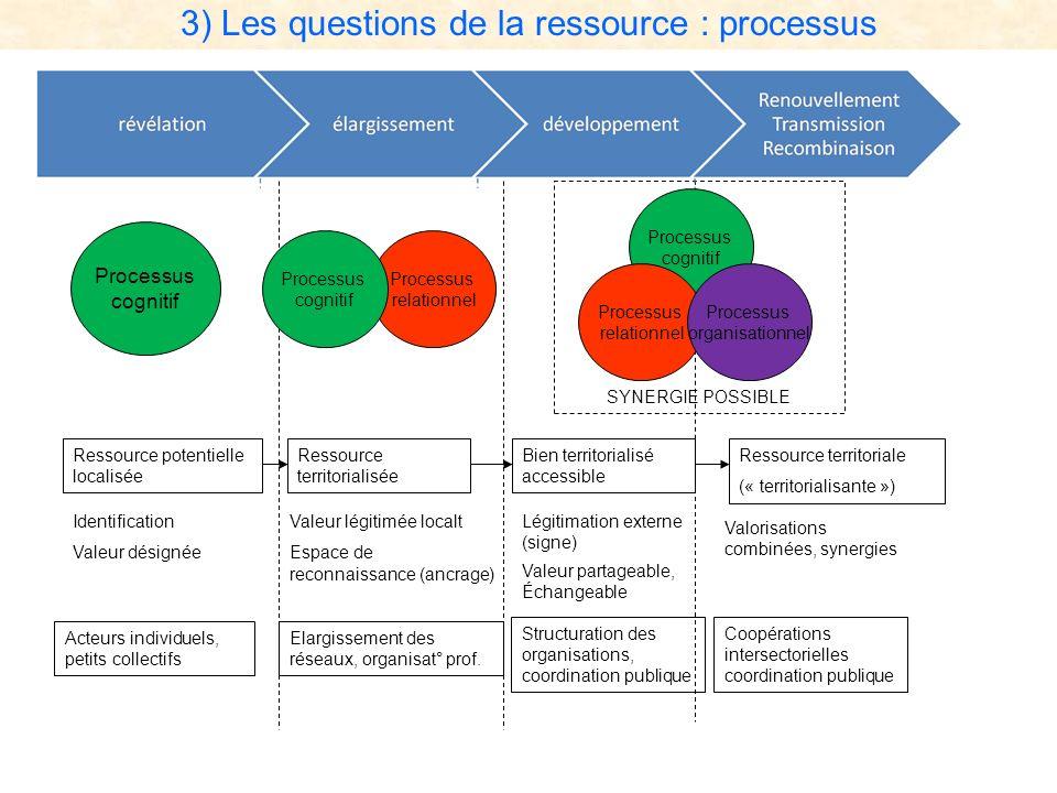 3) Les questions de la ressource : processus Processus cognitif Processus relationnel Processus cognitif Processus cognitif Processus relationnel Proc