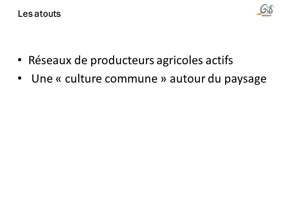 Réseaux de producteurs agricoles actifs Une « culture commune » autour du paysage Les atouts
