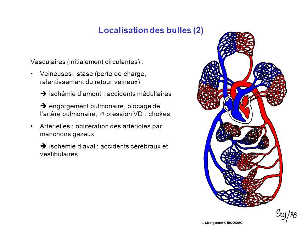 Localisation des bulles (1) Tissulaires (stationnaires) : Compression de vaisseaux Compression de nerfs Dilacération et compression de tendons dans le