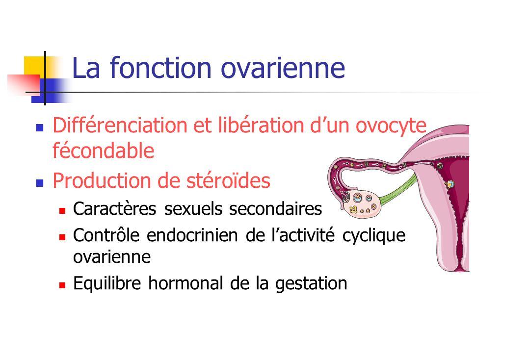 La fonction ovarienne Différenciation et libération dun ovocyte fécondable Production de stéroïdes Caractères sexuels secondaires Contrôle endocrinien