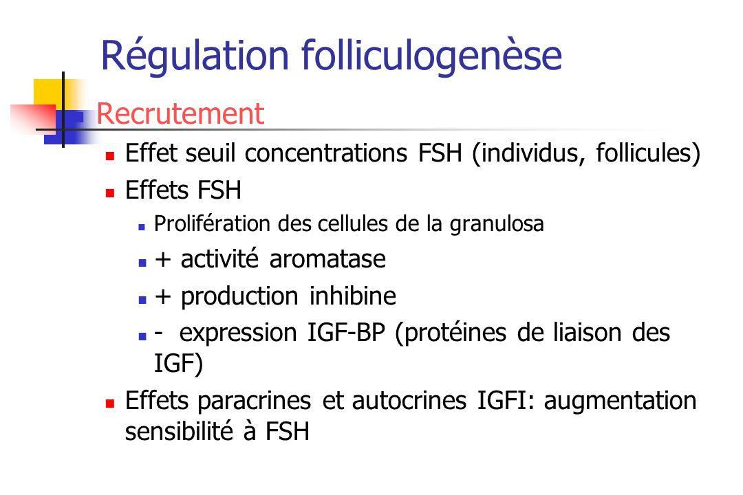 Régulation folliculogenèse Recrutement Effet seuil concentrations FSH (individus, follicules) Effets FSH Prolifération des cellules de la granulosa +