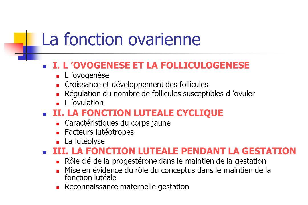 Espèce Nombre vagues follic/cycle Diamètre follicules préovulatoires (mm) Vache Brebis Chèvre Jument Truie Chienne Chatte 2 ou 3 2-4 3 ou 4 1 ou 2 0 - 1 10-20mm 5-8 6-9 35-55 7-10 7-11 3-4 Nombre follic 3-10>4mm 3-6>2mm 5-10>3mm 5-12>10mm 30-50>2-7mm (ph lut) 4mm (J4 post oestrus) 5-8>2mm (J1 oestrus) Croissance folliculaire
