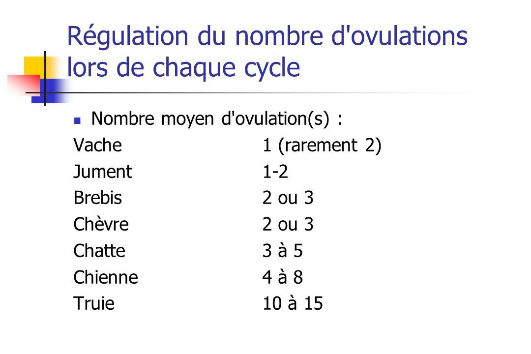 Régulation du nombre d'ovulations lors de chaque cycle Nombre moyen d'ovulation(s) : Vache1 (rarement 2) Jument1-2 Brebis2 ou 3 Chèvre2 ou 3 Chatte3 à