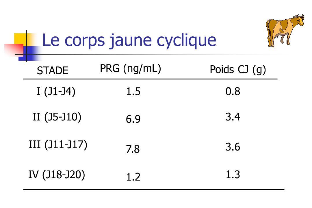 STADE PRG (ng/mL) Poids CJ (g) I (J1-J4) II (J5-J10) III (J11-J17) IV (J18-J20) 1.5 6.9 7.8 1.2 0.8 3.4 3.6 1.3