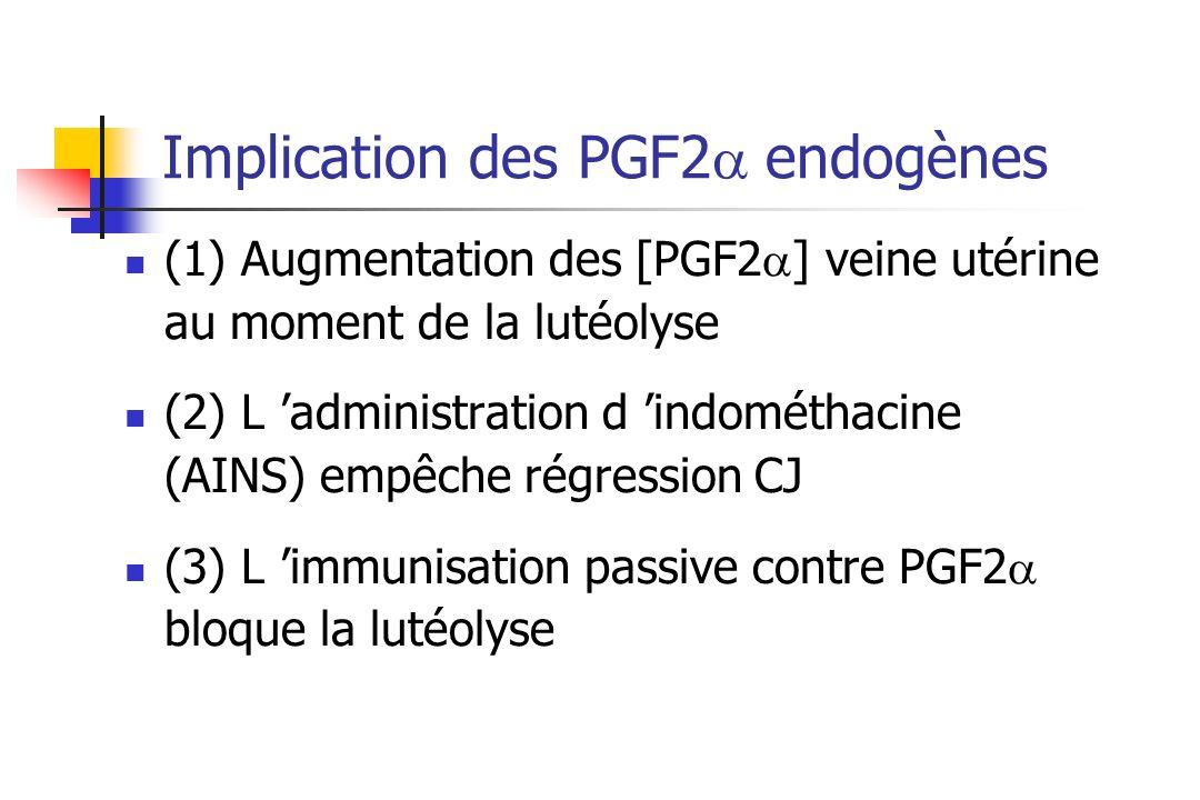 Implication des PGF2 endogènes (1) Augmentation des [PGF2 ] veine utérine au moment de la lutéolyse (2) L administration d indométhacine (AINS) empêch